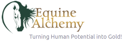 Equine Alchemy logo and tag line