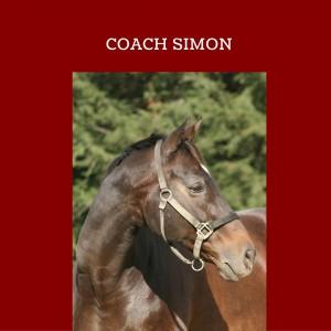 Coach Simon EqineAlchemy.com