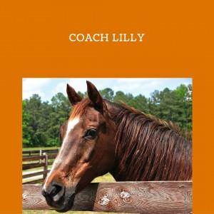 Coach Lilly EquineAlchemy.com