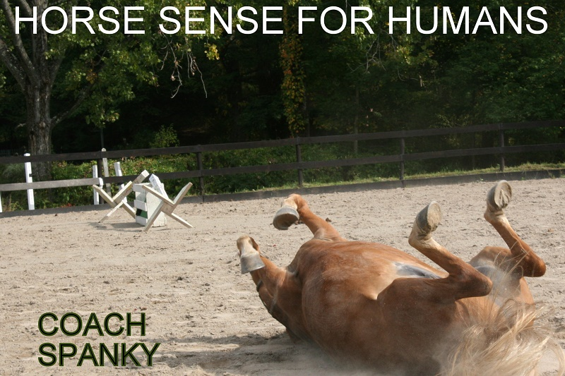 Coach Spanky and the Human Experience